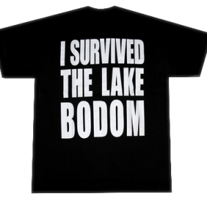 футболка сhildren of bodom i survived
