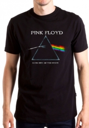 Футболка Pink Floyd DSOM Vintage