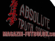 футболка каратэ absolute truth society