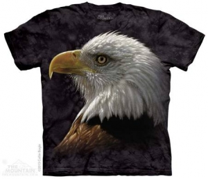 футболка bald eagle portrait