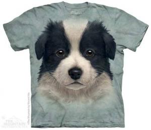 футболка border collie puppy