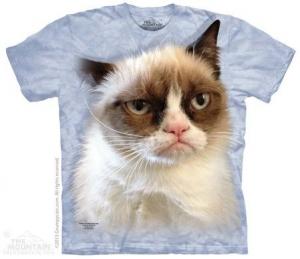 футболка grumpy in blue