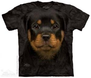 футболка rottweiler puppy