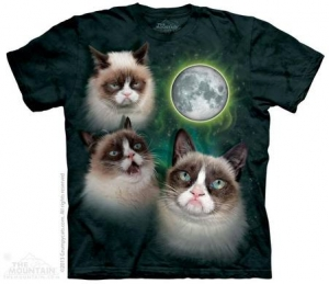 футболка three grumpy cat moon