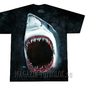 shark bite футболка с акулой