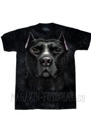футболка питбуль - pitbull
