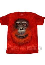 orangutan face футболки с животными 3 д